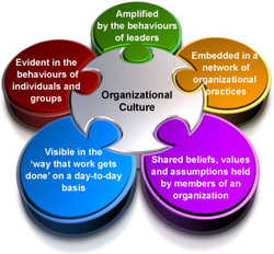 What Is Organizational Culture Amp Why Does It Matter The